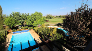 Investment Property in Cyprus 211