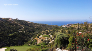 Panoramic Views 329-i